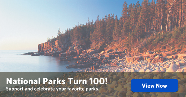 National Parks Turn 100!